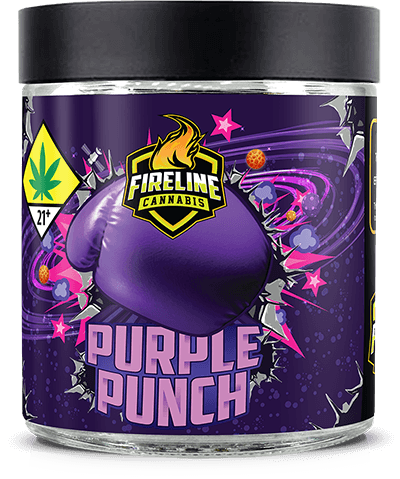 Purple Punch Marijuana Weed Pot Flower Bud